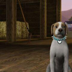 The Sims 3: Zwierzaki.