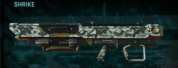 Northern forest rocket launcher shrike