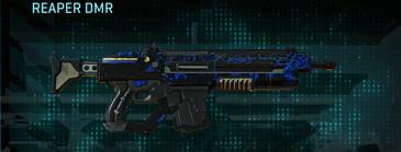 Nc loyal soldier assault rifle reaper dmr