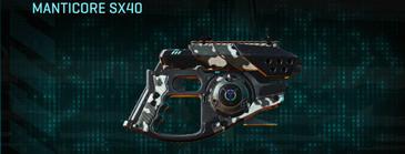 Snow aspen forest pistol manticore sx40