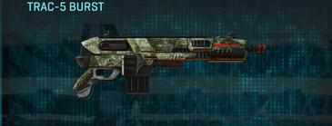 Pine forest carbine trac-5 burst