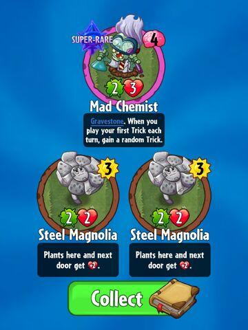 File:Double Magnolia.jpeg
