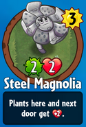 Receiving Steel Magnolia