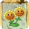 File:Twin Sunflower2.png