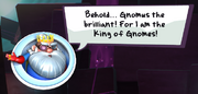 Gnomus the brilliant message