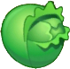 File:Cabbage pvz2.png