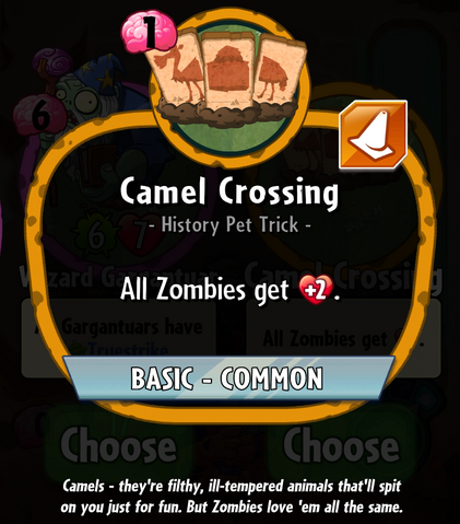 File:CamelCrossingHDescription.png