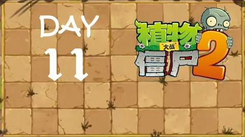 Kung Fu Day 11