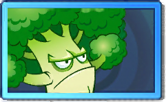 File:Broccoli Rare Seed Packet.png