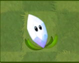 File:Magnifying Grass.PNG