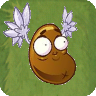 File:CoffeeBeanPVZ2.png