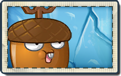 File:Whirlwind Acorn New Frostbite Caves Seed Packet.png