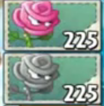 File:Rose seed packets swords.png