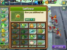 Sunflowerplantfoodboost