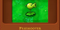 Peashooter/Gallery