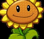 SunflowerCardImage