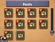 DS Puzzle Page2