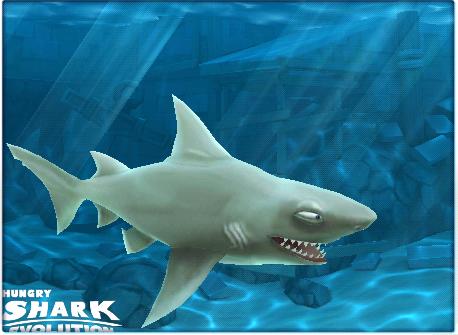 File:Reef Shark HSE.png