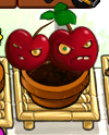File:Leftfacecherry.png