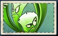 Celery Stalker Seed Packet