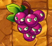 File:GrapeshotJM2.png
