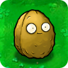 Wall-nut1.png