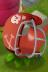 File:MagnetPlantFootballHelmet.PNG
