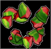 File:Pogo parteh cracked melon.png