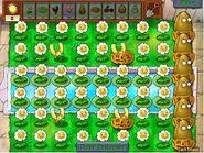 Super Gold Farming