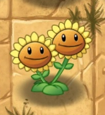 File:New twin sunflower.png