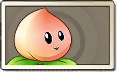 File:Peach Common Seed Packet.png