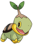 387Turtwig DP anime 7