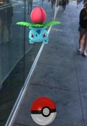 Pokemon Go 11