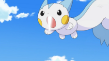 Dawn Pachirisu Super Fang