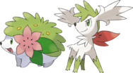 Shaymin All