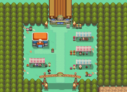 Safari Zone Gate HGSS