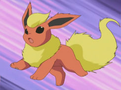 Savannah Flareon
