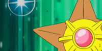 Misty's Staryu (anime)
