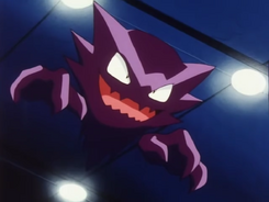 Morty Haunter