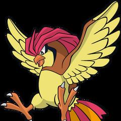 Pokemon Ash 27s Pidgeot Images
