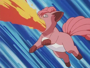 Suzy Vulpix Flamethrower