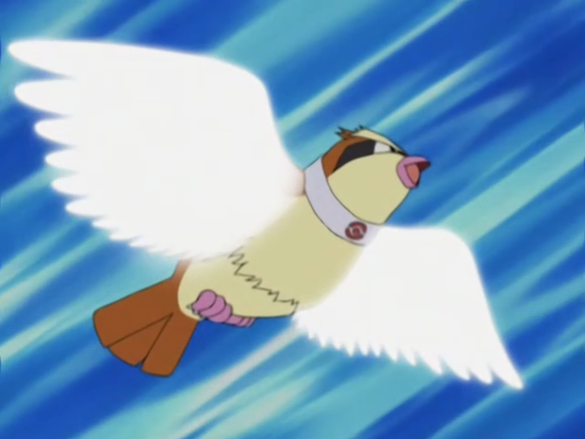 Image Trainer School Pidgey Wing Attack Png Pok 233 Mon Wiki Fandom Powered By Wikia