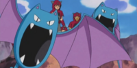 Team Magma's Golbat (anime)