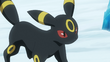 Gary Umbreon