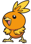 255Torchic AG anime 7