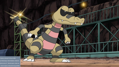 Clay Krokorok