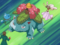 May Venusaur