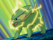Jaco Electrike