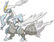 646Kyurem-White XY anime