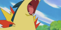 Mr. Moore's Typhlosion